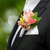 groom-sth