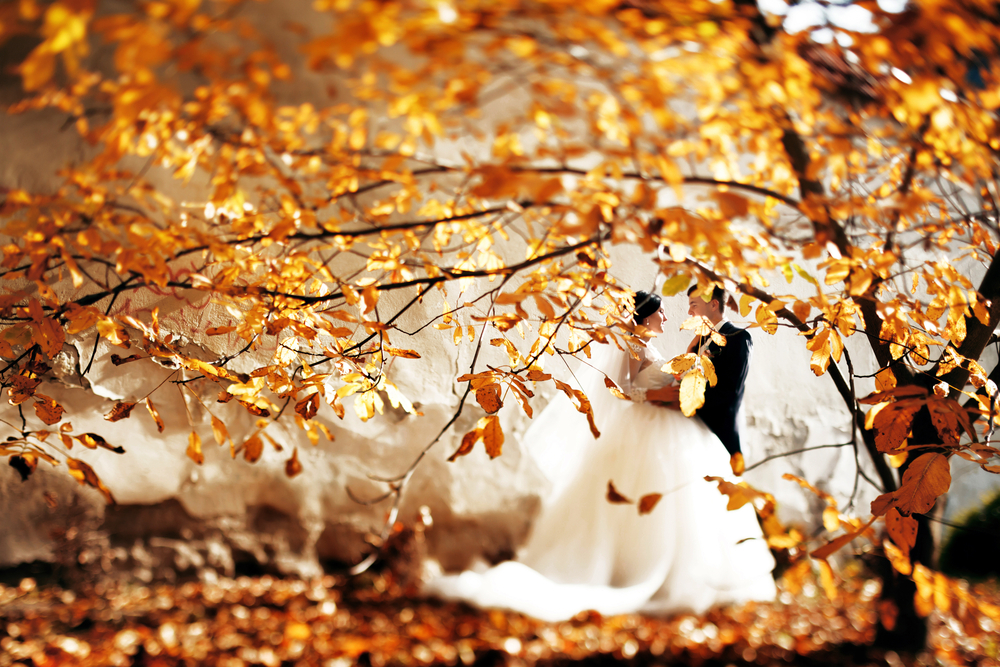 Get Married With Autumnal Elegance